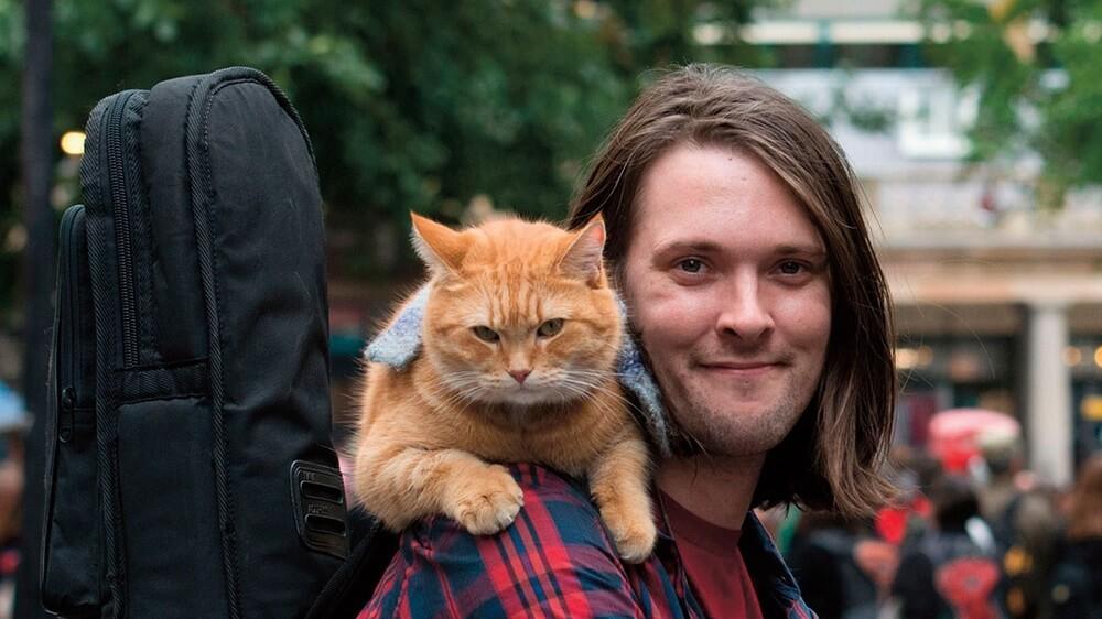 bob chú mèo đường phố (2)