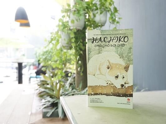 Hachiko chú chó đợi chờ - Reviewsach.net