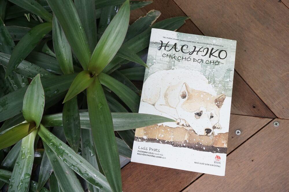 Hachiko chú chó đợi chờ