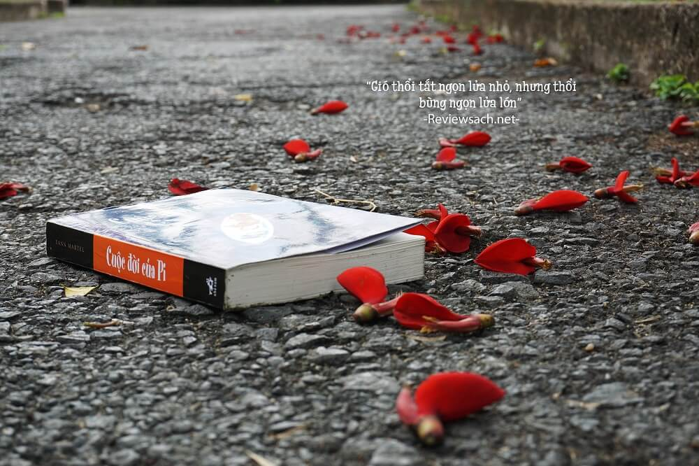 review cuộc đời của pi - văn học nước ngoài