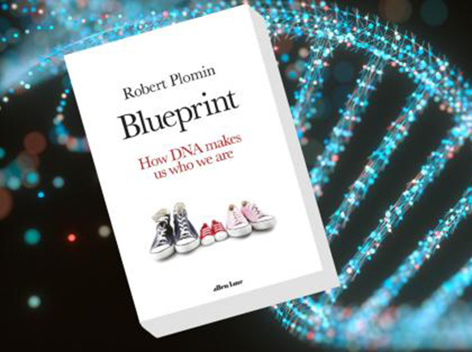 Blueprint Robert Review book 2018