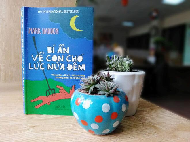sách hay - bi_an_ve_con_cho_luc_nua_dem - reviewsach.net