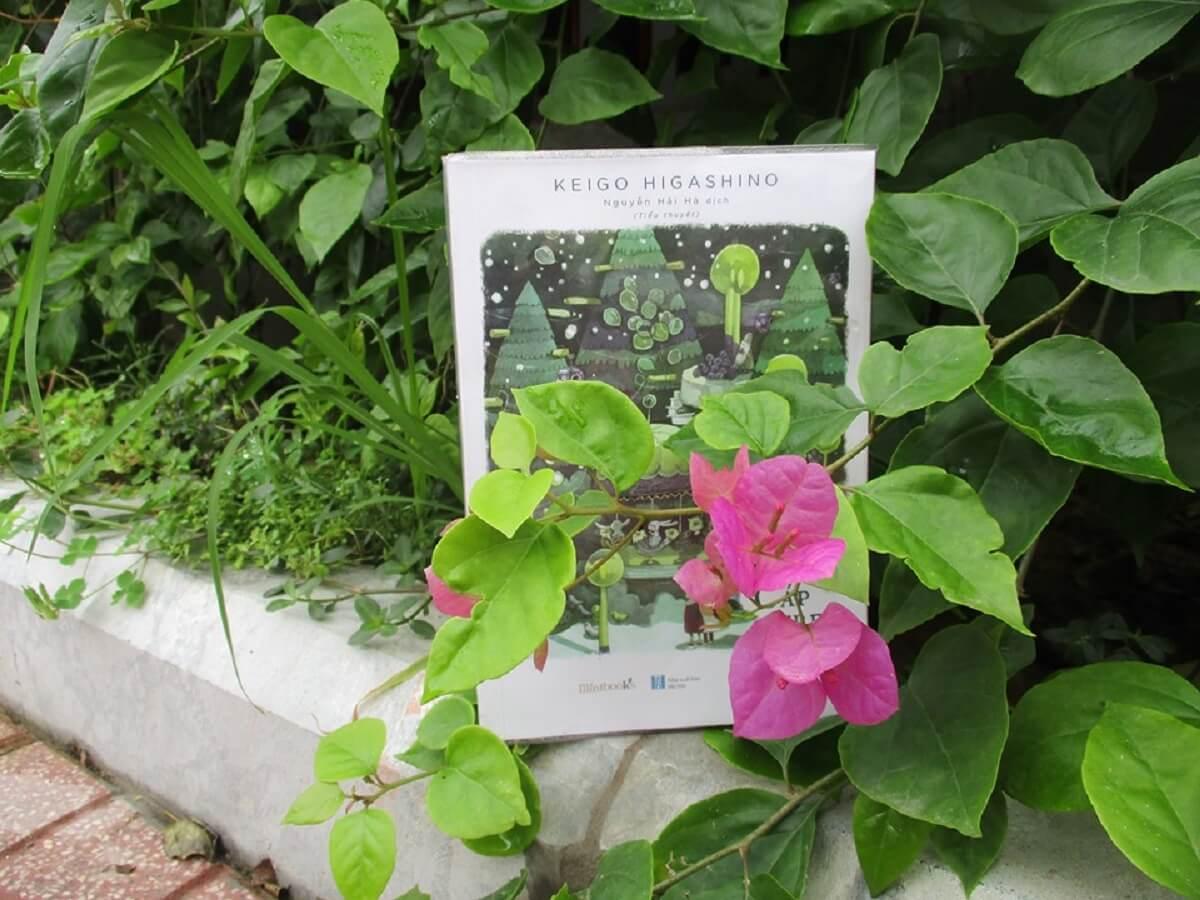 Cáp treo tình yêu review sách