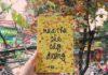 cover review sach mua thu cua cay duong
